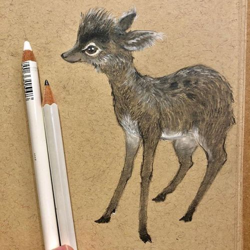 A little mouse deer. Happy weekend 💕 stay cool! sketchbook deer sk