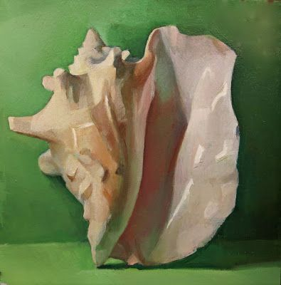 Conch Shell on Green