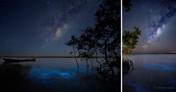 Photographer Captures the Milky Way and Bioluminescence Together in Beautiful Photos