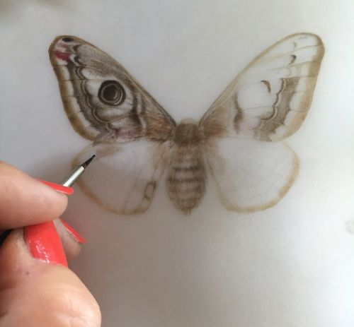 A Visit to the William Cowley Works: Trying out Transparent Vellum