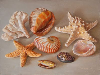 Seashells still life painting contemporary realism a painting a day