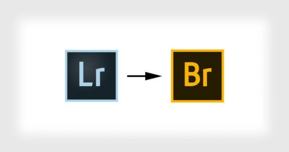 Tired of Lightroom? Ditch the Catalog and Try Adobe Bridge