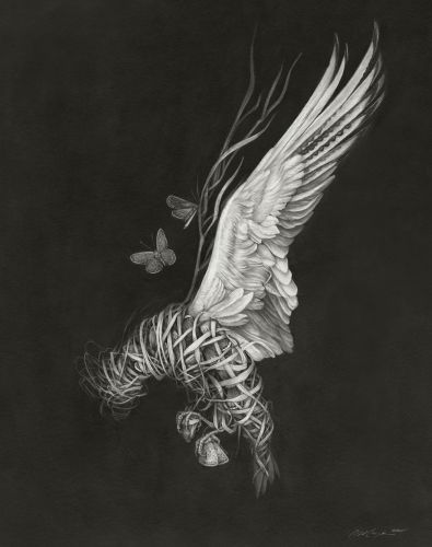 Surrounded by Feathers, Birds Clutch Their Bleeding Hearts in Christina Mrozik's Monochromatic Illustrations