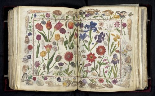 A 400-Year-Old 'Friendship Book' Contains Hundreds of Signatures of Historical Figures