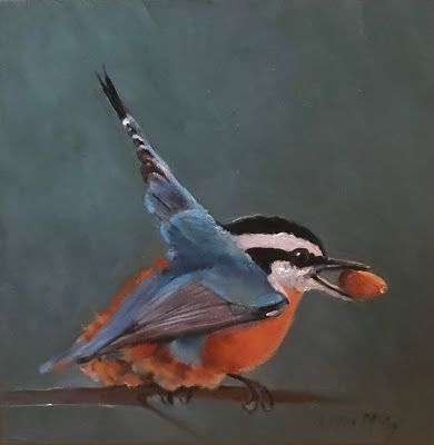 Red Breasted Nuthatch ll