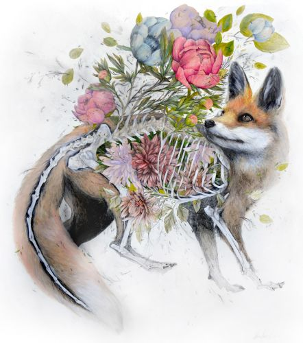 Flowers Blossom From the Bodies of Wild Animals in New Graphite and Acrylic Works by Nunzio Paci