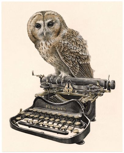 Birds Sit Delicately on Vintage Sewing Machines and Typewriters in a New Illustrated Series by Steeven Salvat