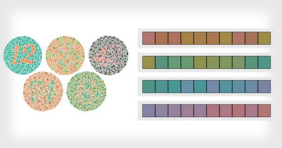 Are You Colorblind, and How Good is Your Color Vision?