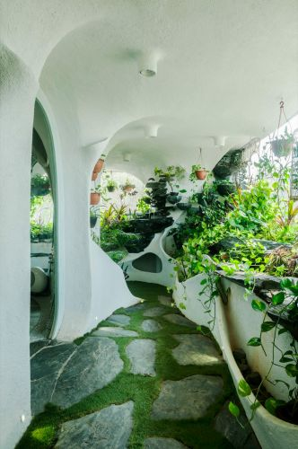 A Verdant Landscape Breathes Life into a One-Bedroom Apartment in a Suburb of Mumbai