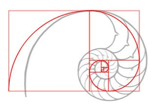 The Golden Ratio: Fact or Fiction-And Does It Really Matter?