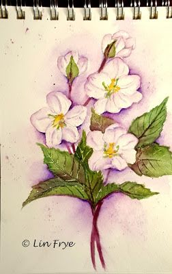 Journal - Hellebores - Lin Frye