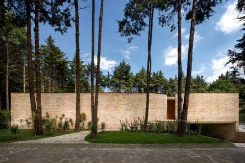 Forest House / LANZA Atelier