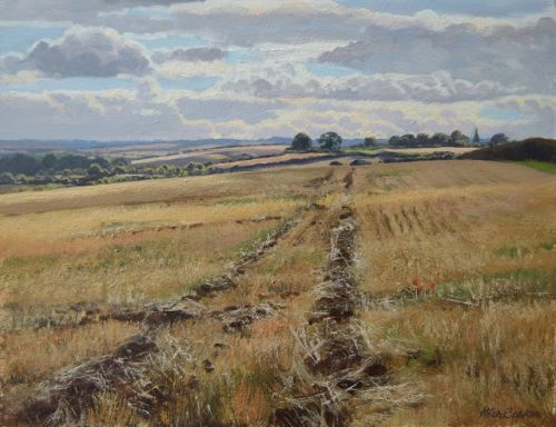 Harvest Fields, Towards Seaton