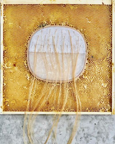Bees Encase Raw-Material Embroideries with Honeycomb in New Encaustic Works by Ava Roth