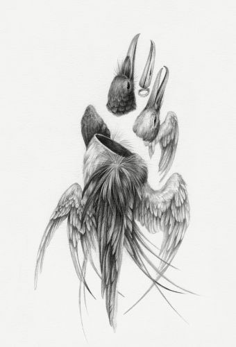 Haunted Bodies: A Collection of New Hybrid Drawings About Healing and Loss by Christina Mrozik