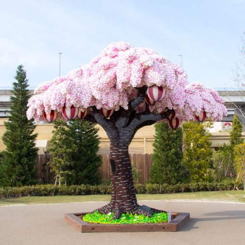 The World's Largest LEGO Cherry Blossom Tree Blooms in Japan