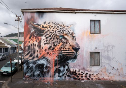 """Corridors of Hope"" by Sonny in Cape Town, South Africa"
