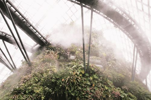 Majestic Conservatories and Cozy Private Potting Sheds Showcase the Universal Appeal of Glass Greenhouses