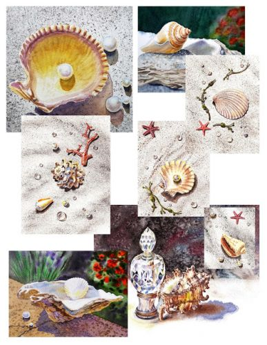 Seashells Seascapes And Artist's Inspirations