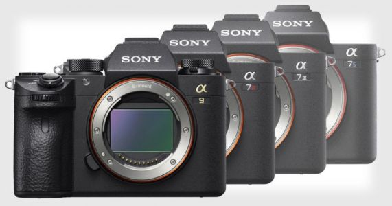 Sony is Now 1 in Full-Frame Cameras in the US