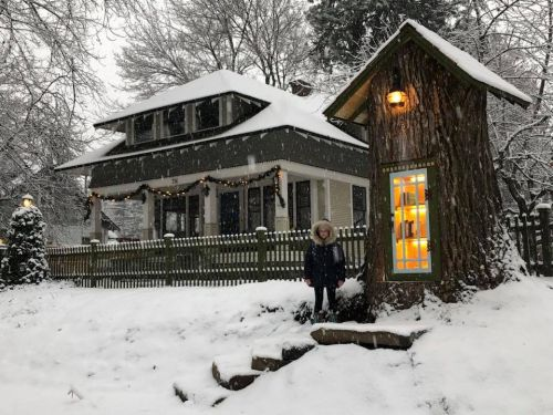 Little Tree Library: A Clever Twist on the Donation-Based Community Library Gives New Life to a Big Old Stump