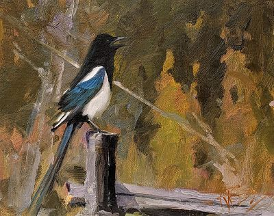 """Magpie"" original oil painting by Robin Weiss"