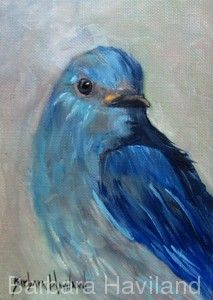 Mountain Blue Bird,oils canvas,Barbara Haviland-Texas Wildlife Artist