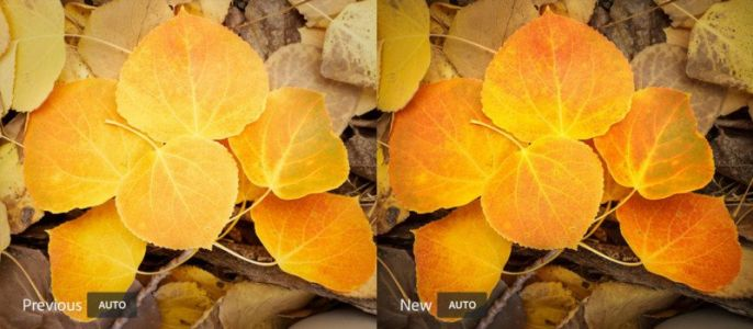 Lightroom CC Ecosystem Gets Better AI 'Auto' and More in Dec 2017 Update