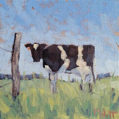 Cow Art Original Oil Painting Heidi Malott