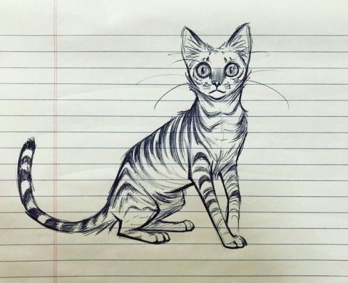 Development meeting doodle. cat stareintosoul sk