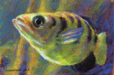 Day 15 - Archerfish