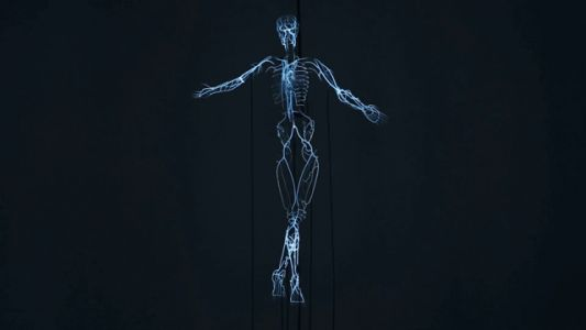 A Pulsating Neon Skeleton by Tavares Strachan Honors Scientist Rosalind Franklin
