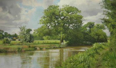 The Oak by the Canal