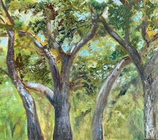 Lupe Live Oaks, by Melissa A. Torres, 11x14 oil on canvas panel, SOLD
