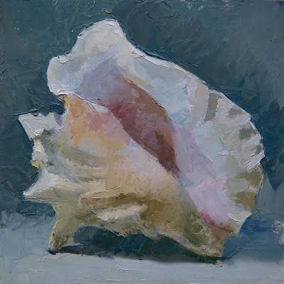 Conch Shell in Daylight