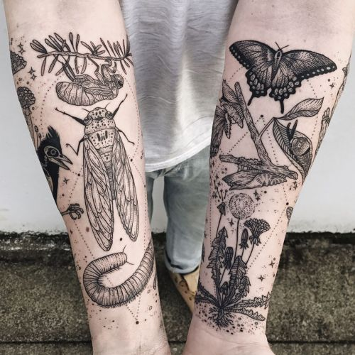 A Collision of Flora, Fauna, and the Cosmic in Tattoos by Pony Reinhardt