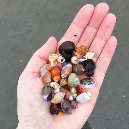 A handful of treasure