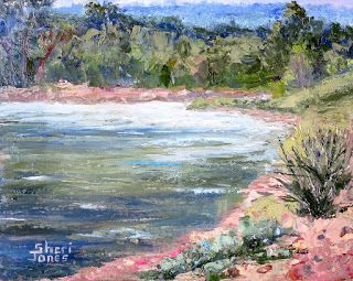 Along the Brazos River, New Contemporary Landscape Painting by Sheri Jones