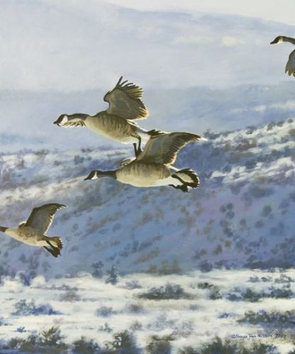 """Original Canada Geese Wildlife Painting """"Gliding Home"""" by Colorado Artist Nancee Jean Busse, Painter of the American West"""