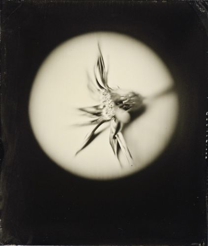 Tintypes Made Using Focusing Loupes As Lenses