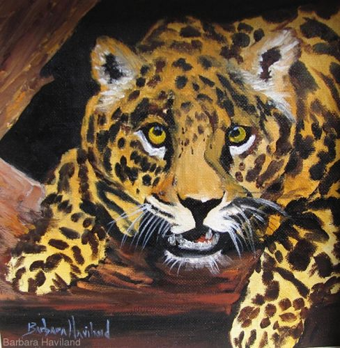 Leopard Big Cat oil painting,wildlife,Barbara Haviland