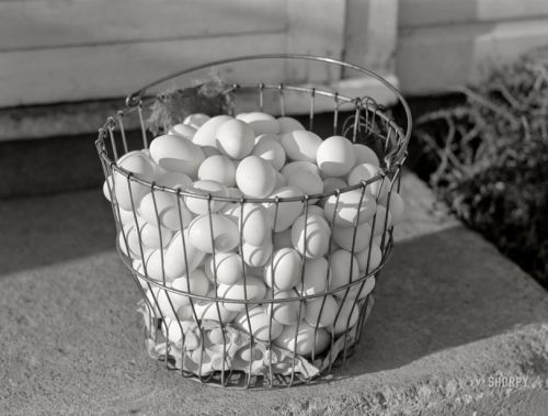 In One Basket: 1941