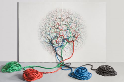 Organic Shapes Emerge in New Installations of Intertwined Rope by Janaina Mello Landini