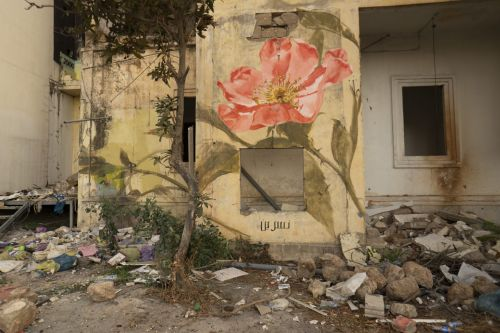 'Medicinal Flowers of Lebanon' by Faith XLVII Sprout from the Damaged Streets of Beirut