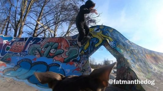 This Dog is a Talented Skateboarding Cameraman