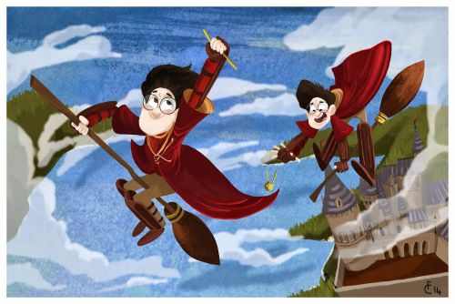 Harry playing Quidditch