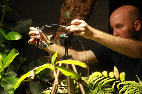 World's First Plant-Powered Camera Takes World's First Plant-Powered Selfie