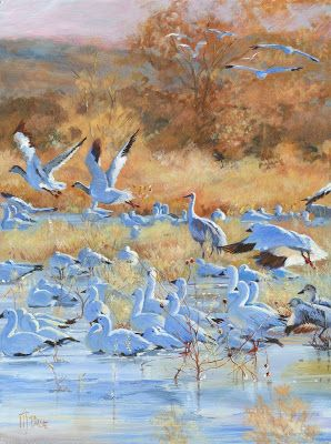 "Original Wildlife, Bird Painting,""BACK TO BOSQUE"" by Nancee Jean Busse, Painter of the American West"