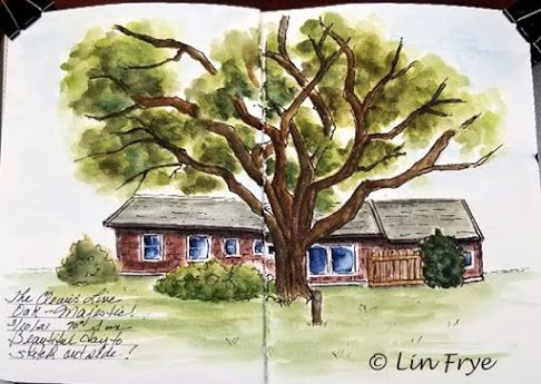 Sketchbook Journal - Live Oak and brick house