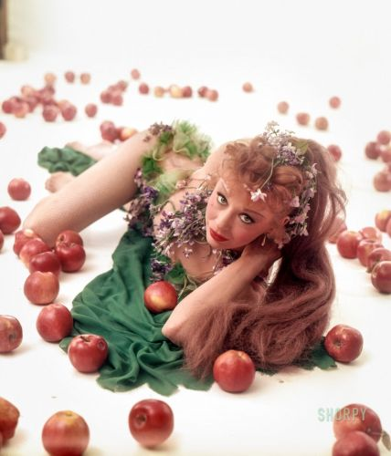 Red Delicious: 1953